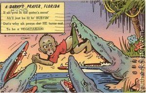 un bebe noir pris par des Alligators